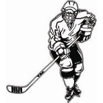 HP 15 Hockey Sticker