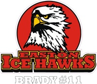Easton Ice Hawk Car Window Decal clings & Stickers