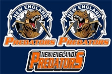 NE Predator Helmet decal logo with front logo