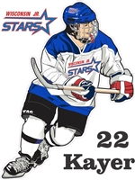 Wisconsin Jr Stars AAA Ice Hockey Decals Clings