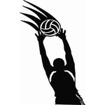 Volleyball Decals Category Image