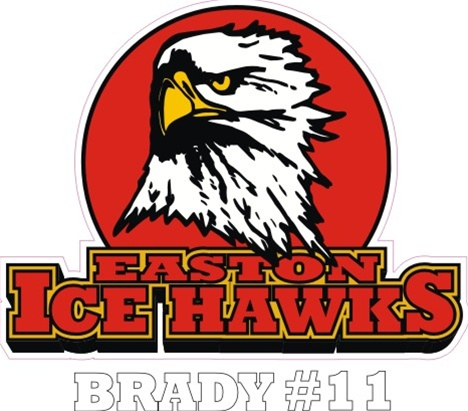 Easton Ice Hawks Hockey Team Store Banner