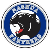 NASHUA Panthers Car Window Decal