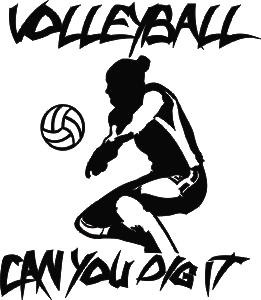 customized volleyball car window decals stickers tagsports net Isuzu V-Cross customized volleyball car window decal
